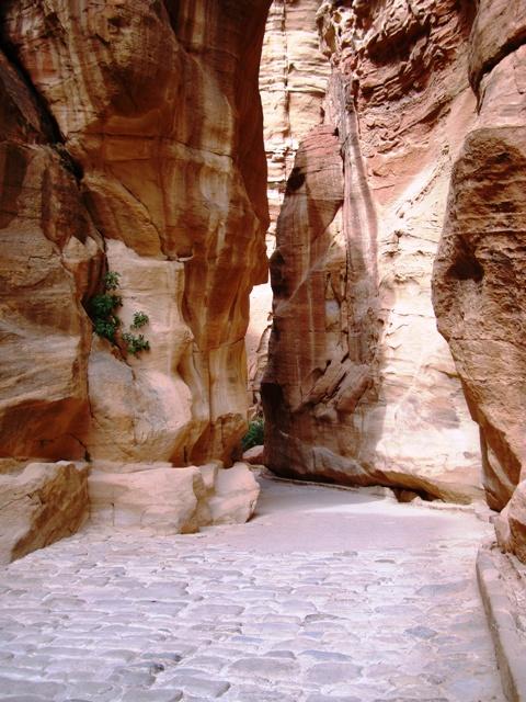 Jordanie : Petra, le Siq